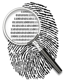 Computer Data Investigator
